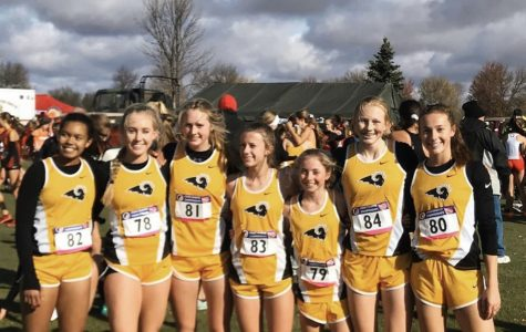 Freshmen Jacie Mitchell and Jenna Francois, juniors Mattison Plummer, Grace Larkins, and Magda McGowan and seniors Tarryn Hill and Natalie Clement posed together before they ran at the state meet in Fort Dodge.
