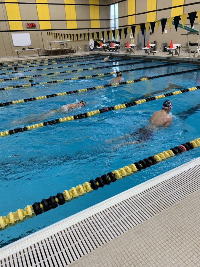 A group of boys swimming breaststroke.